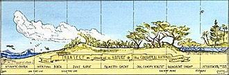 cross-section illustration of natural Transect from Atlantic ocean to beach to dunes to woodlands