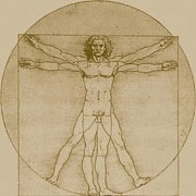 Leonardo daVinci's Vitruvian Man drawing is likely the most famous drawing in human history