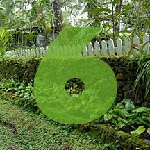 the number 6 superimposed over picture of fence and garden wall in Panama