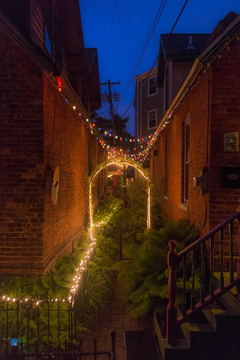 festive light strings adorn the fence top and leap from eave to eave between two close-set brick cottages on a Buffalo evening