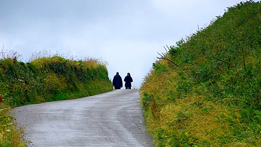 country lane in the Cornwall countryside of England