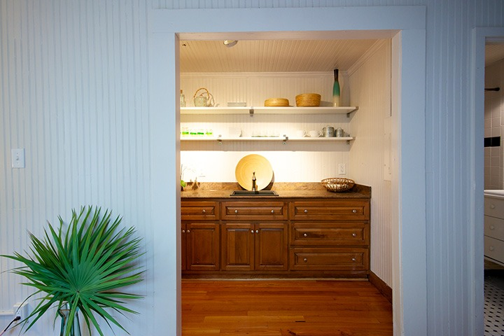 palmetto leaf splays against white boarded wall beside opening into softly glowing kitchen cabinets beyond