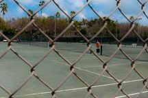 peering through chain-link fence into tennis courts in Flamingo Park in Miami Beach