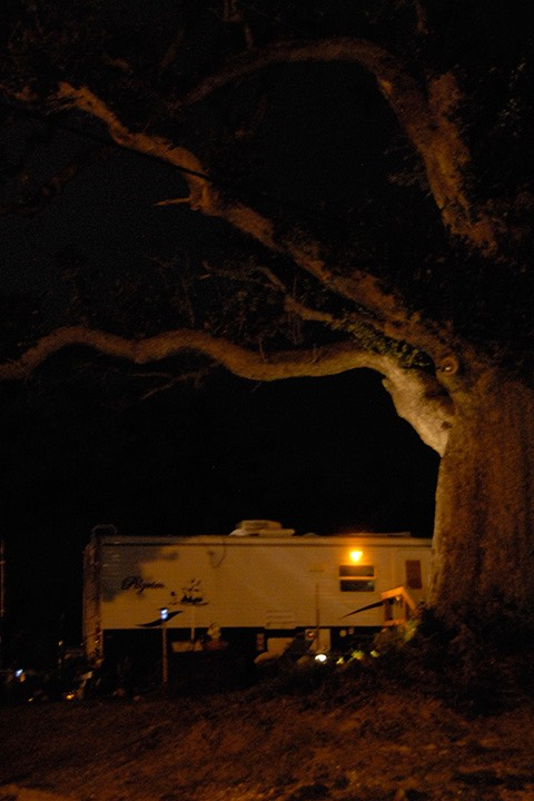 FEMA trailer's porch light illuminates the underarm of a massive Mississippi oak a year after Katrina