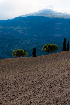 Tuscan hillside with mountain in background