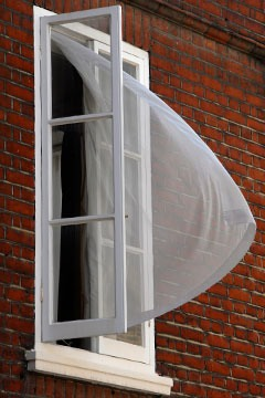 curtain blowing out window in London breeze