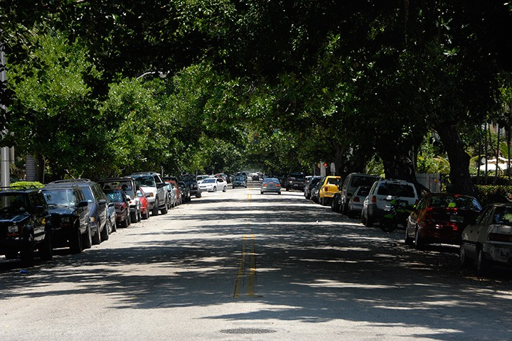 Meridian Avenue in Miami Beach, shaded by a beautiful canopy of trees