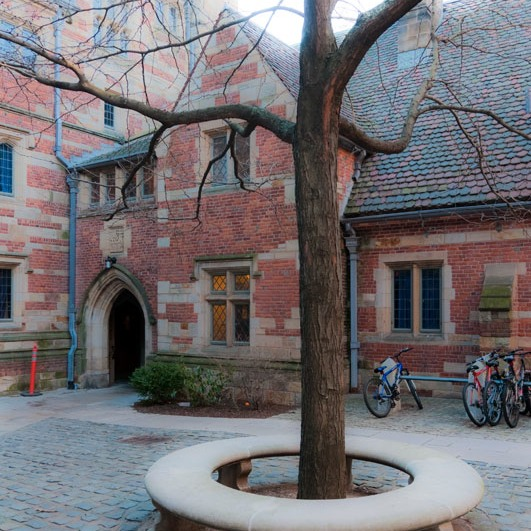 classic academic court on a cold day at Yale
