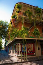 wrought iron galleries filled with plants in the French Quarter, just behind Jackson Square