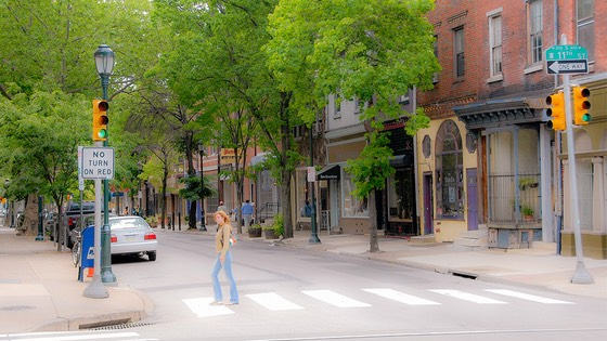 canopy of street trees shade a Philadelphia mixed-use street on late springtime morning