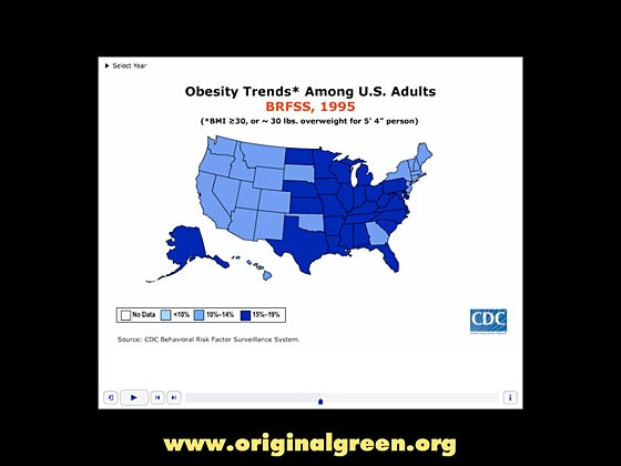 diagram of US obesity by state in 1995