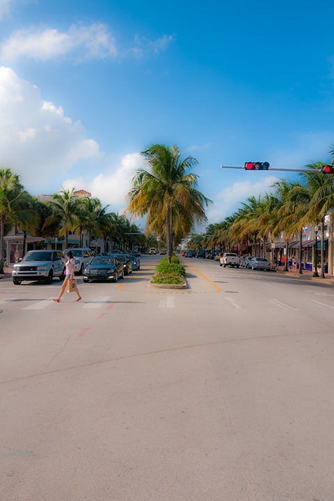 woman crossing palm-lined Washington Avenue in Miami Beach