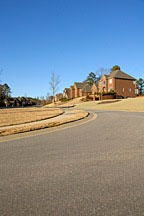 houses in sprawling subdivision near Birmingham, Alabama