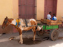 horse hitched to small wooden wagon with Jeep tires in Trinidad de Cuba