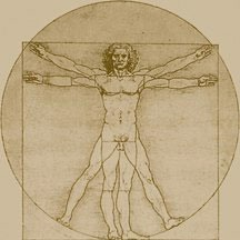 Leonardo's Vitruvian Man drawing