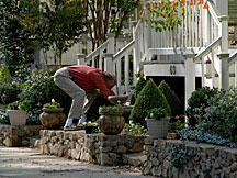 man standing atop a short stone wall, working in his small front garden at the Waters, near Montgomery, Alabama